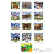 Карточки Обучающие ДИКИЕ ЖИВОТНЫЕ 5-14-0005 Проф-Пресс /0 /0 /150 /0