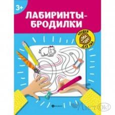 Книжка Лабиринты-бродилки: 3+. - Изд. 2-е; сер. Орешки для ума Феникс