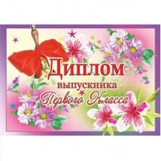 Диплом выпускника 1 класса 3ВКТ-2854 Оля и Женя